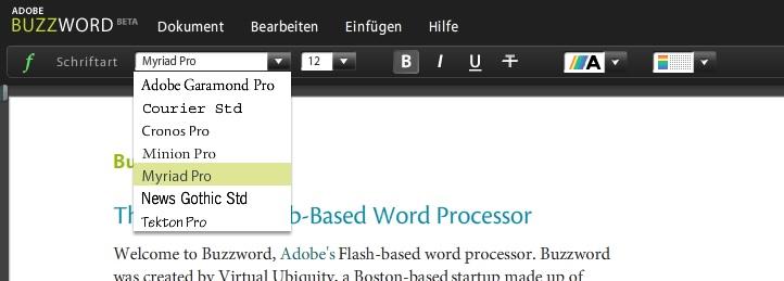 """Screenshot: die webbasierte Textverarbeitung """"Buzzword"""""""